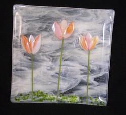 Tulips in a Field $89
