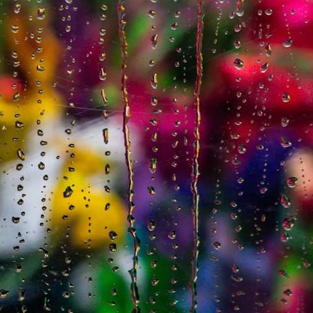 Rain drops on a flower shop