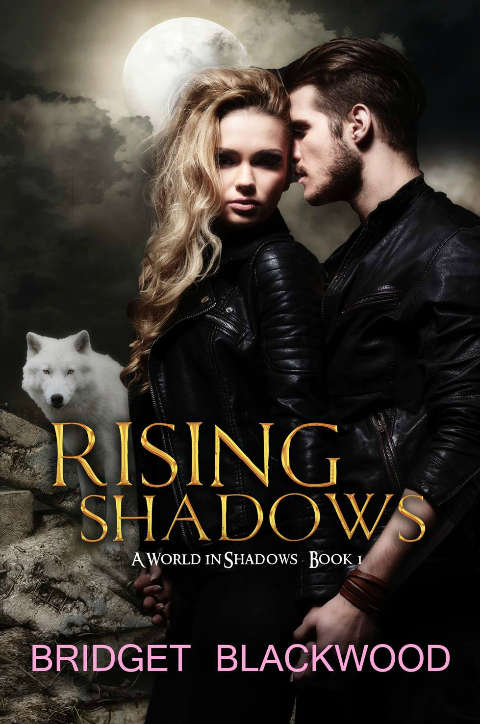 bridget blackwood_rising shadows_ebook.jpeg