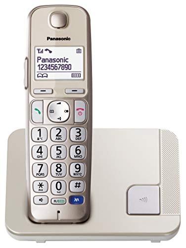 Panasonic tecla grande