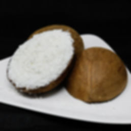Sorbet Shells - Coconut