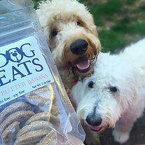 Dogs&Treats.jpg