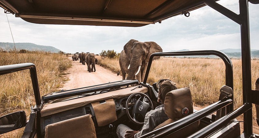 Game%20drive%20on%20an%20African%20safar
