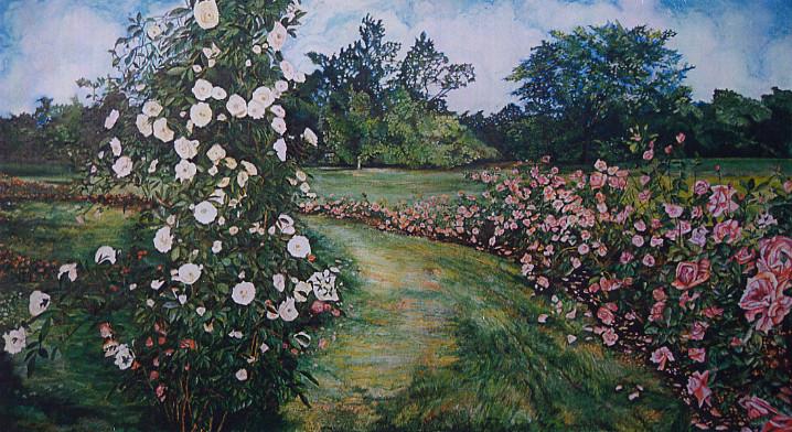 Pink v. White Roses