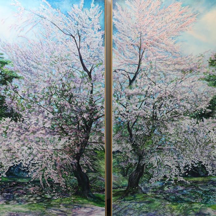 Cherry Trees Reflexion