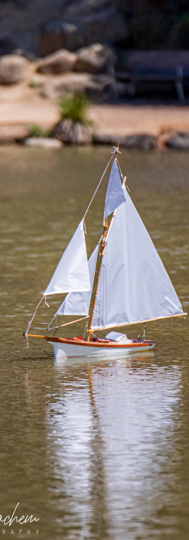 Surrey Park Model Boat Club 2020