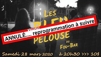 poster les BLEU PELOUSE  - Lili mars 202