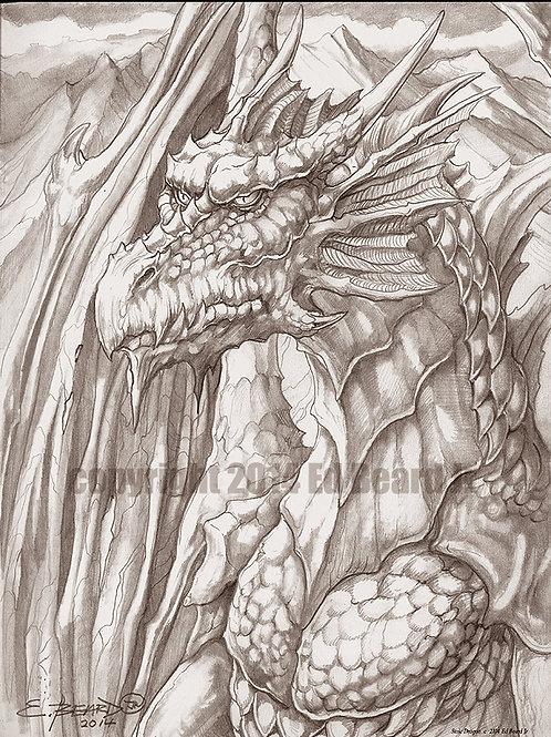Stoic Dragon