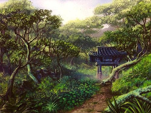 Korean Forest