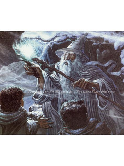Wizard's Fire - J.R.R. Tolkien