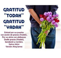 GRATITUD TODAH GRATITUD YADAH  1