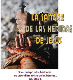 SANGRE DE LAS HERIDAS DE JESUS