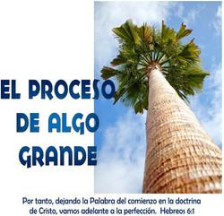 PROCESO DE ALGO GRANDE