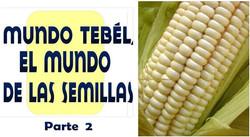MUNDO TEBEL SEMILLAS  2