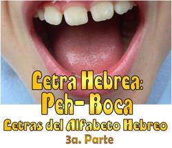 PEH BOCA 3