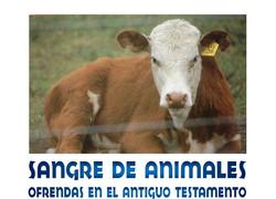 SANGRE DE LOS ANIMALES
