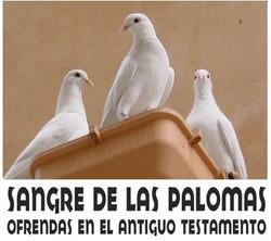 SANGRE DE PALOMAS
