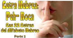 PEH BOCA 2