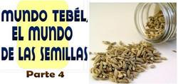 MUNDO TEBEL SEMILLAS 4