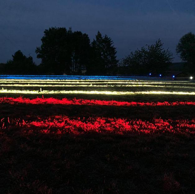 Illuminations 14 Juillet