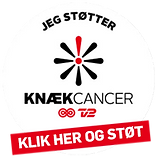 kk_steno.png