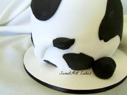 Cow Smash Cake Back
