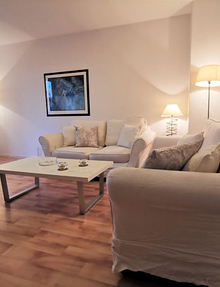 livingroomI.jpg