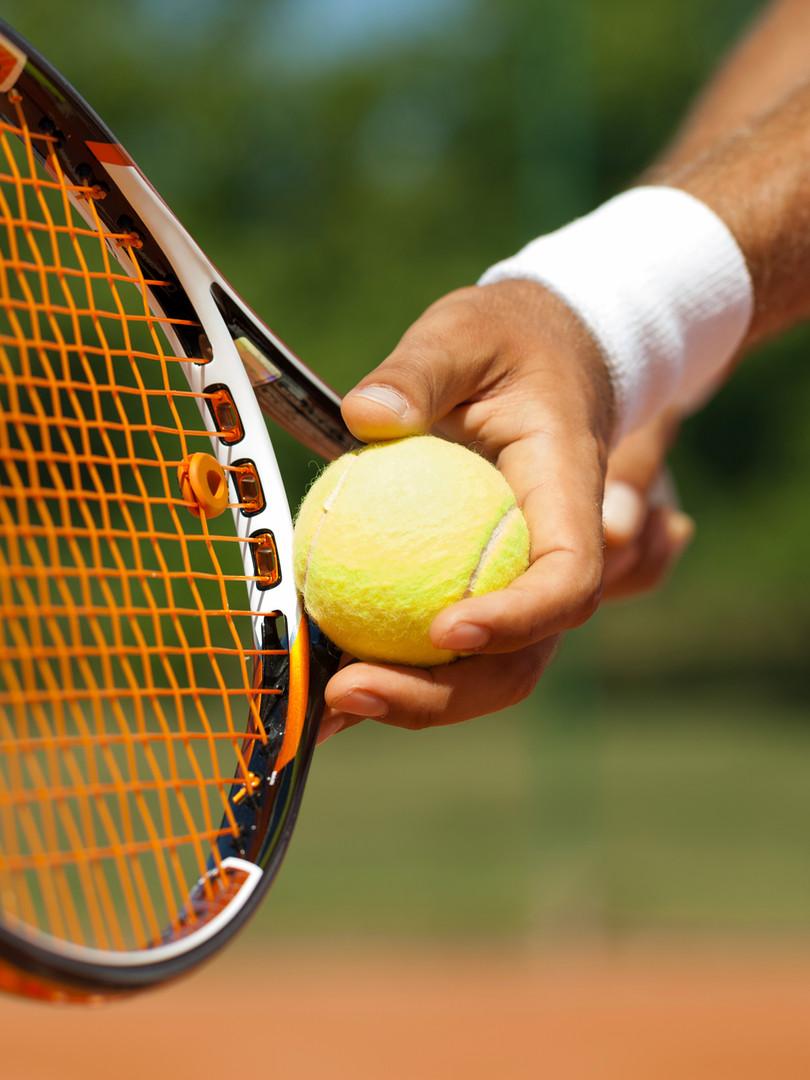伊豆半島 アクティビティ テニスラケット