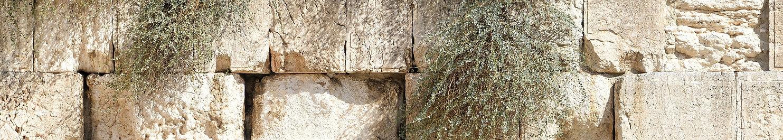 jerusalem-1328645_1920 (1).jpg