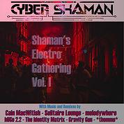 shamansgatheringvolI6.jpg