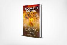Beyond The Raging Flames 3d Final copy.j