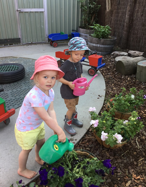 Watering our Plants