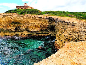 Enjoy a full of fun. This adventure allows you to explore the entire island. Start your day driving through the areas of Vieques only accessible by car. End your adventure with a sightseeing cruise and let our captain take you to the best hidden spots around the island.