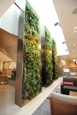 Green Wall Vertical Garden Feature