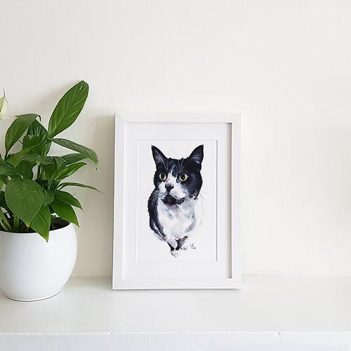 Watercolour Pen Pet Portrait