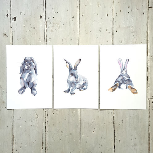A4 Portrait x3_Rabbit.jpg