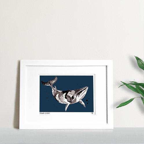 Abstract Minke Whale
