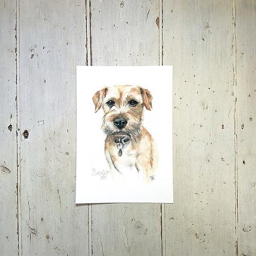 Watercolour & Pencil Pet Portait