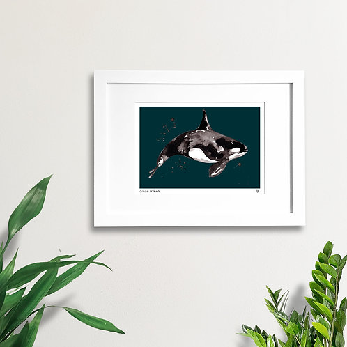 Abstract Orca Whale