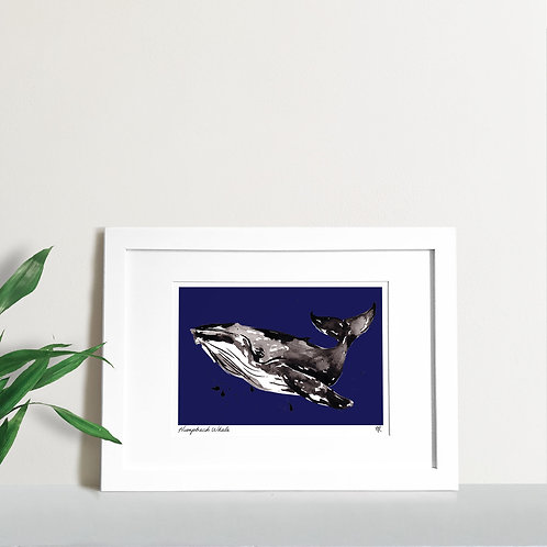 Abstract Humpback Whale