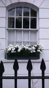 The white facade