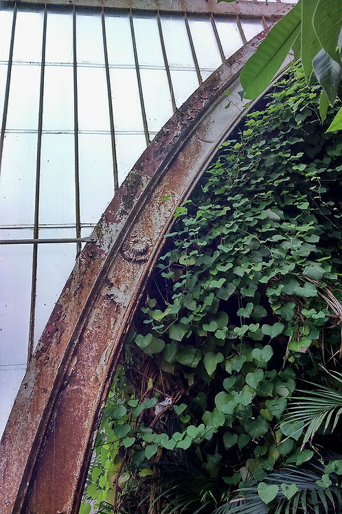 Victorian arch with rambling foliage
