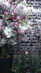 Handwriting with petals