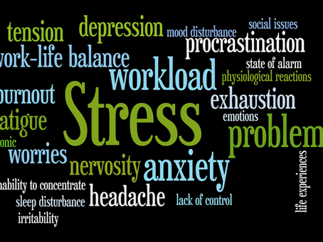 5 Steps to Achieving Emotional Balance