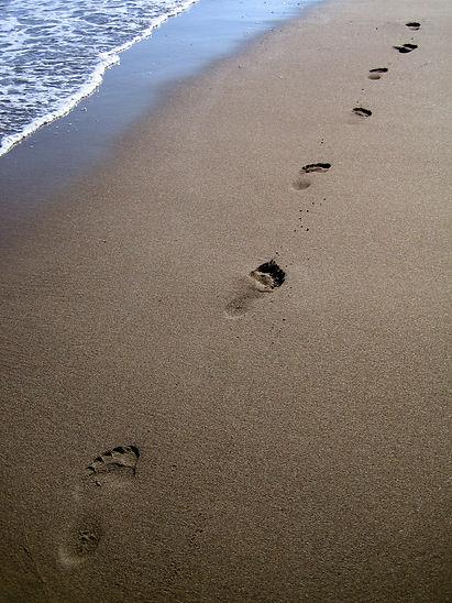 beach-1191893.jpg