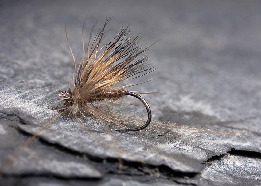 Deer Hair Sedge