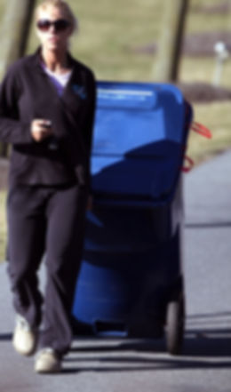 Taking Garbage to Curb. Driveway service
