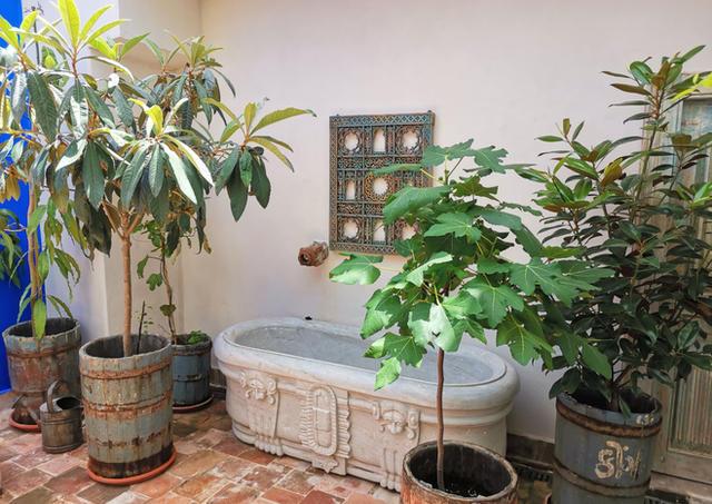 Marvel bath in the garden