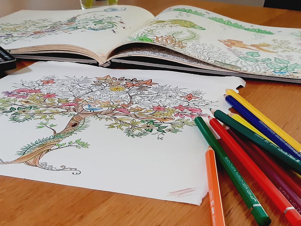coloriage, apaisement, concentration, méditation