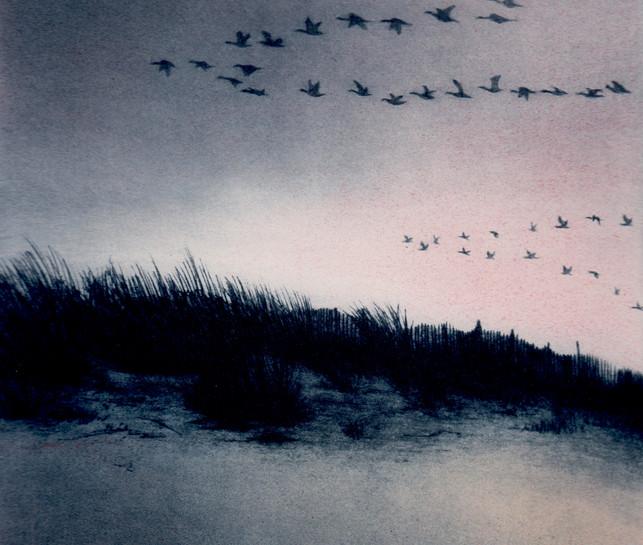 'Coastal Skeins ll'